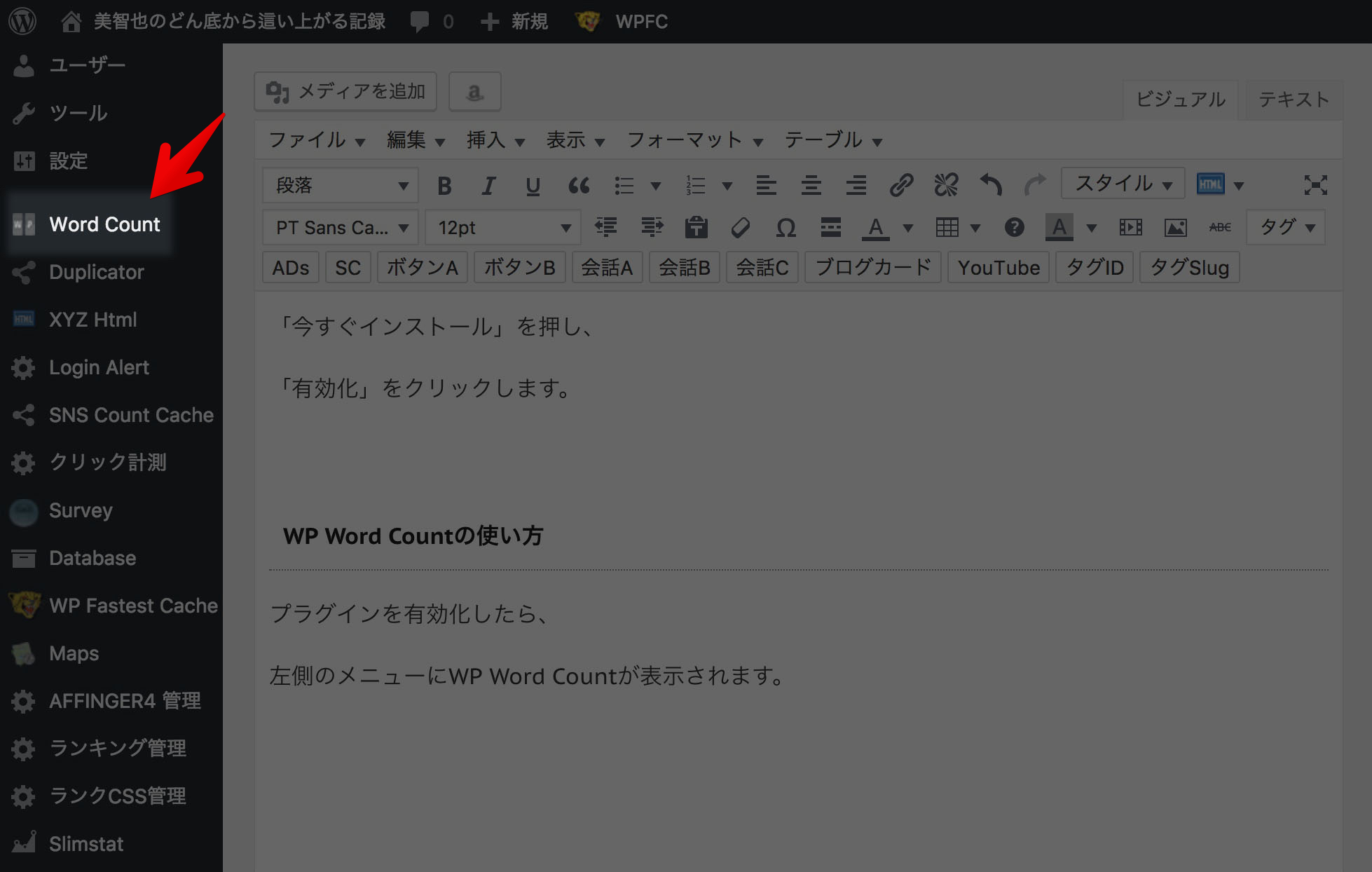WordPress 文字数